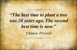 Contact us now is message behind chinese proverb.